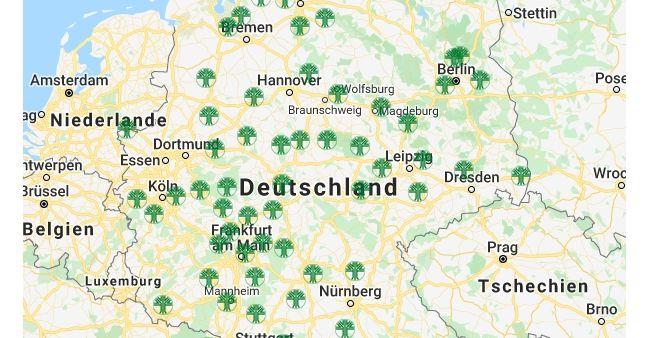 Standorte Friedwald Die Bestattung In Der Natur