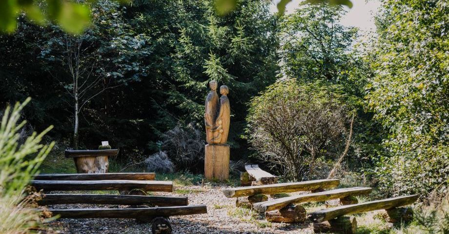 Bad Laasphe - FriedWald - Die Bestattung in der Natur