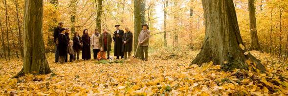 Friedwald Friedwald Die Bestattung In Der Natur